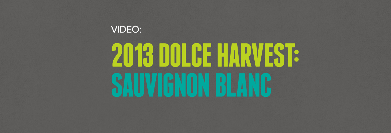 Video: 2013 Dolce Harvest: Sauvignon Blanc