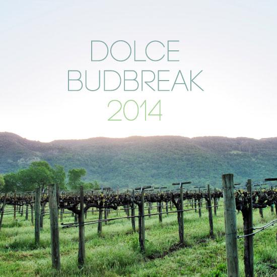 2014 Dolce Budbreak